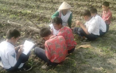 Outing Class, Wawancara Petani ke Kebun Sayur